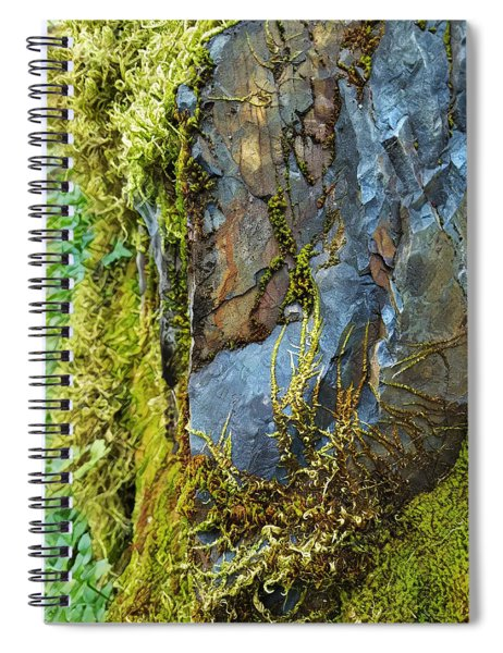 Rock, Moss, And Ferns Spiral Notebook