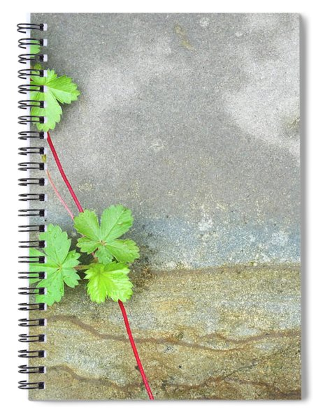 Rock Stain Abstract 4 Spiral Notebook