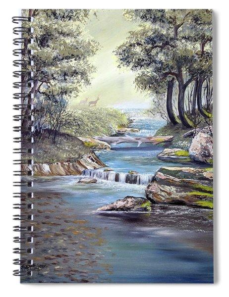 Rocky Stream Spiral Notebook
