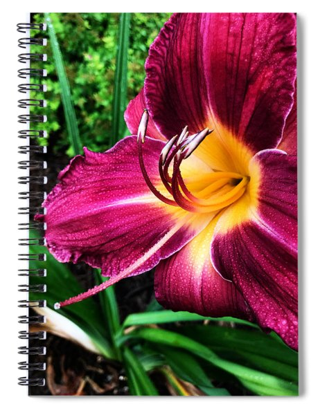 Rolling Spiral Notebook