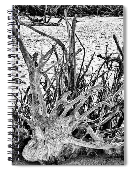 Rooted In Black And White Spiral Notebook