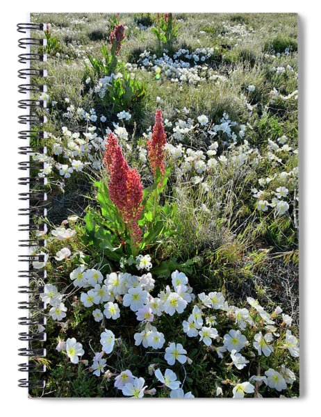 Ruby Mountain's Wildflower Prairie Spiral Notebook