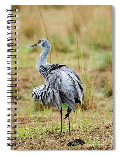 Ruffled Crane Spiral Notebook