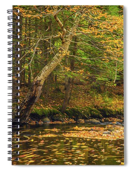 Running Waters Spiral Notebook