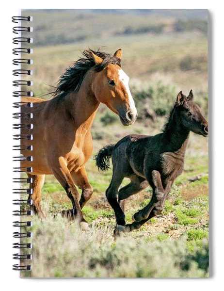 Running Wild Mustangs - Mom And Baby Spiral Notebook