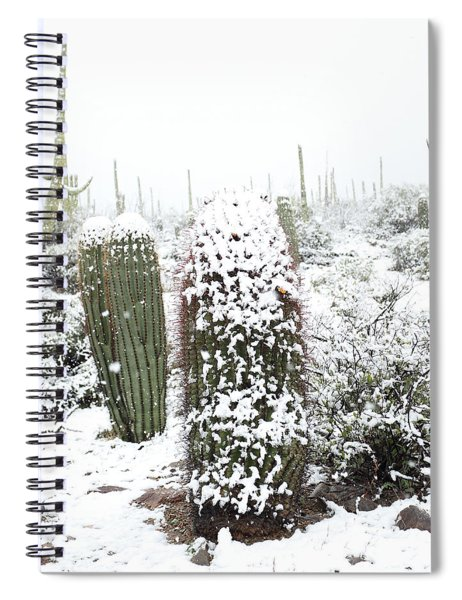 Saguaro In The Snow Spiral Notebook