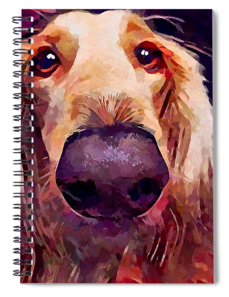 Saluki 3 Spiral Notebook