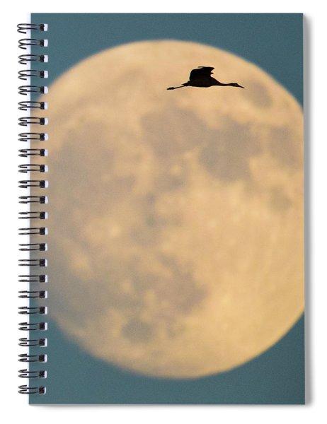 Sandhill Crane Antigone Canadensis Spiral Notebook