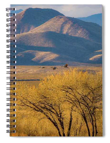 Sandhill Cranes Near The Bosque Spiral Notebook
