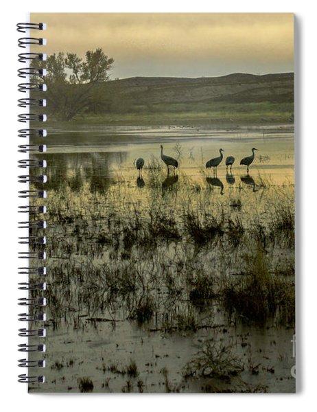 Sandhill Serenity Spiral Notebook