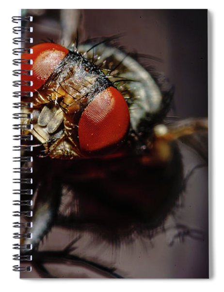 Scavenger Close-up Spiral Notebook