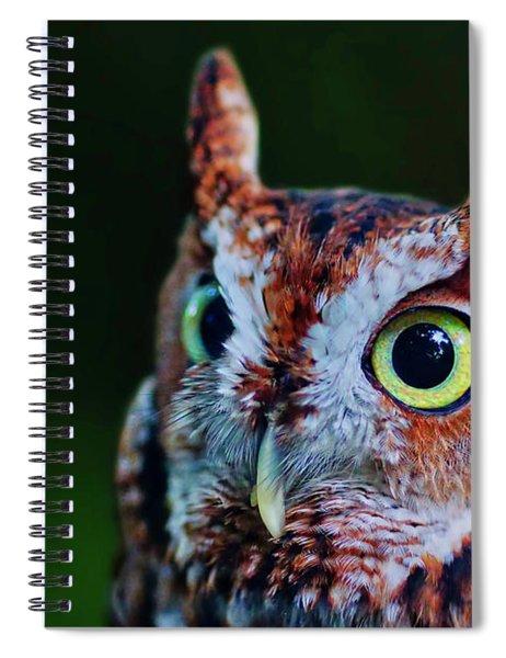 Screech Owl Face Spiral Notebook