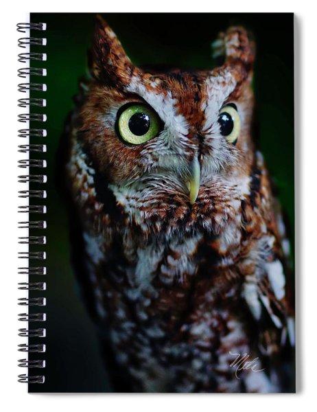 Screech Owl Vertical Spiral Notebook
