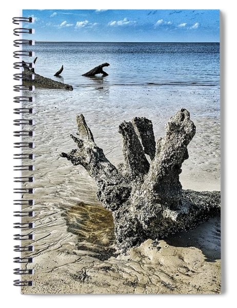 Sculpted By The Sea Spiral Notebook