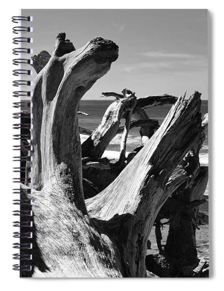Sea Bones Spiral Notebook