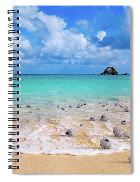 Sea Urchins  Spiral Notebook