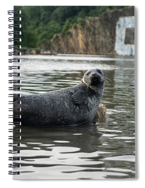 Sealy  Spiral Notebook