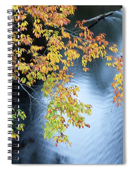 Seasons Of Change Spiral Notebook