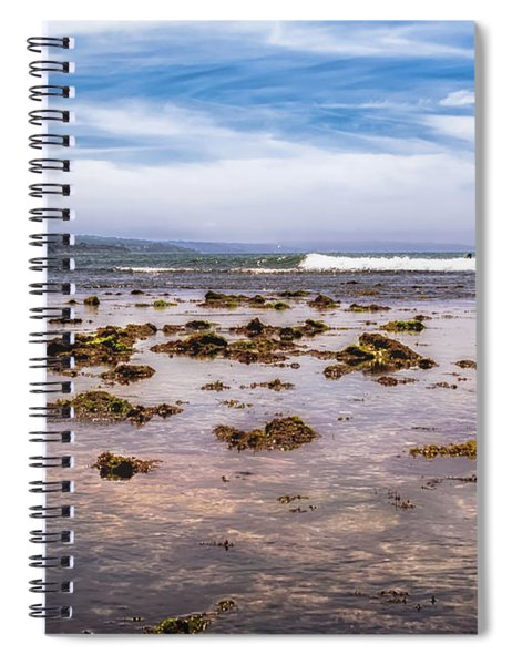 Seaweed At Low Tide Spiral Notebook by Alison Frank