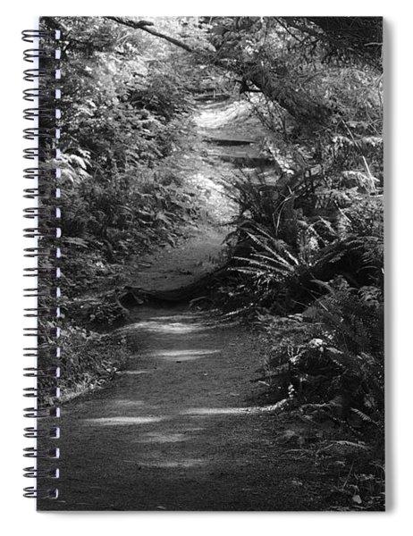 Secret Path Spiral Notebook