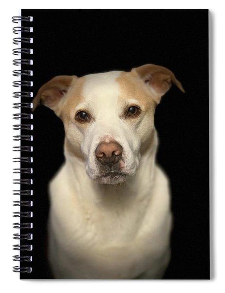 Seriously Snofie Studio Shot Spiral Notebook