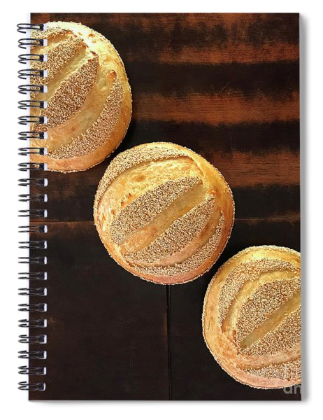 Sesame Seed Stripes 1 Spiral Notebook
