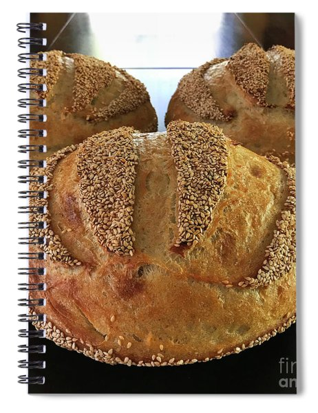 Sesame Seed Stripes 2 Spiral Notebook