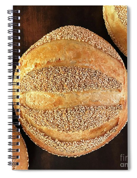 Sesame Seed Stripes 4 Spiral Notebook