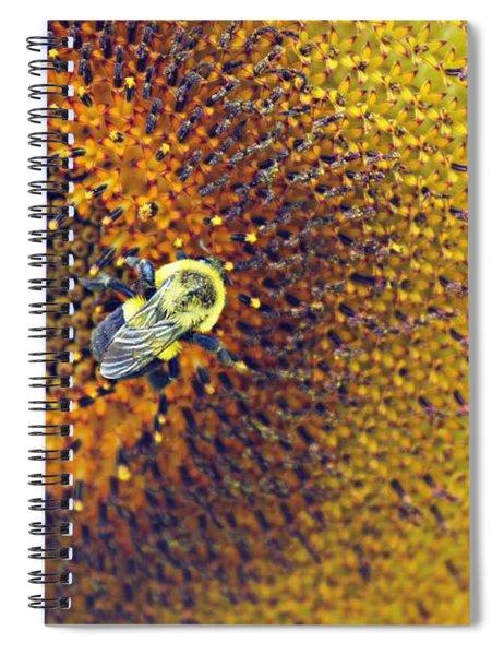 Shades Of Sun Spiral Notebook