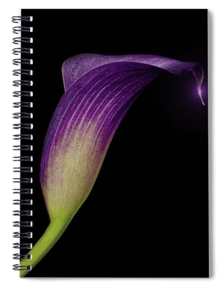 Shape Of A Lily Spiral Notebook