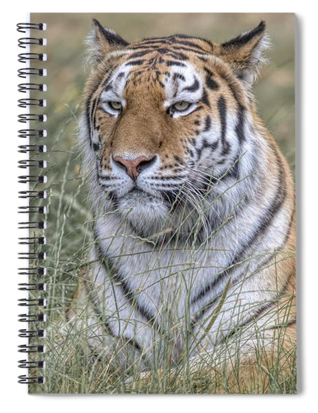 Shere Khan Spiral Notebook