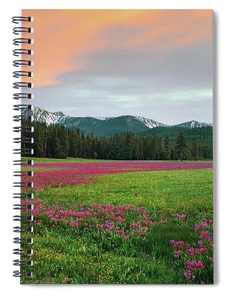 Shooting Stars Spiral Notebook