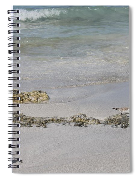 Shorebird Spiral Notebook