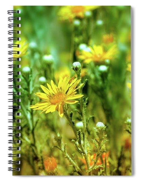 Showy Goldeneye Spiral Notebook