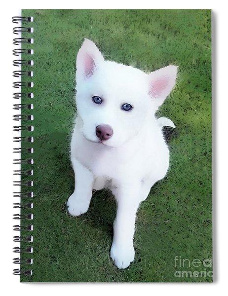 Siberian Husky Puppy A030619 Spiral Notebook by Mas Art Studio