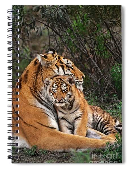 Siberian Tiger Mother And Cub Endangered Species Wildlife Rescue Spiral Notebook