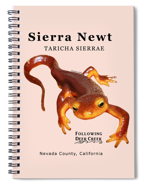 Sierra Newt - Black Text Spiral Notebook