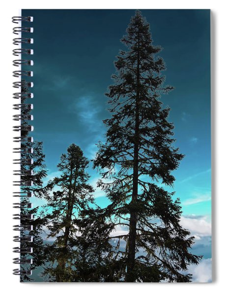 Silhouette Of Tall Conifers In Autumn Spiral Notebook