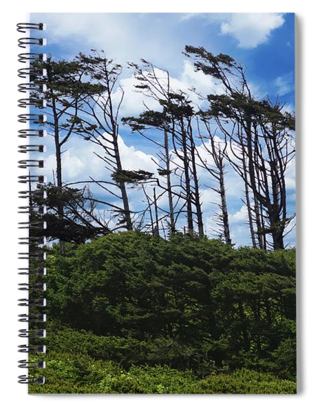 Silhouettes Of Wind Sculpted Krumholz Trees  Spiral Notebook