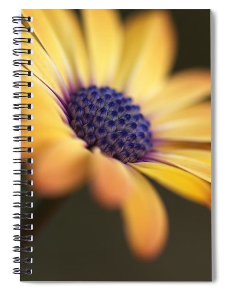 Simply Beautiful In Yellow To Orange  Spiral Notebook