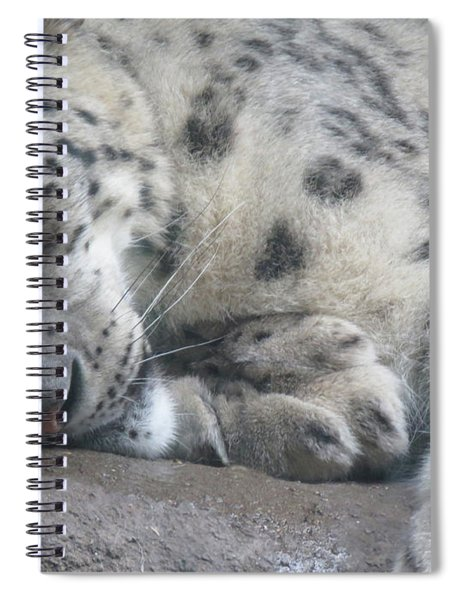 Sleeping Cheetah Spiral Notebook