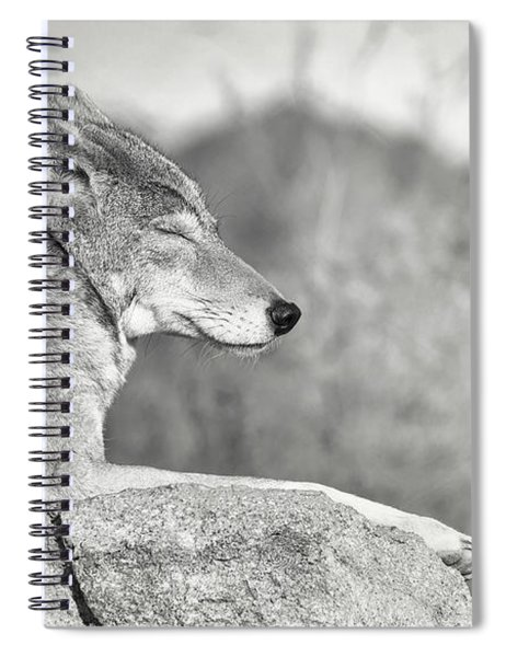 Sleepy Coyote Spiral Notebook
