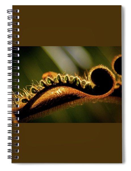 Sleepy Stretching Spiral Notebook