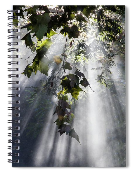 Smoke Gets In Your Skies Spiral Notebook