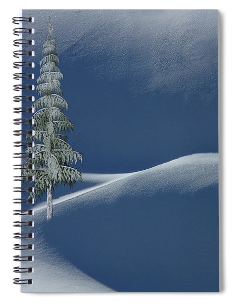 Snow Covered Tree And Mountains Color Spiral Notebook