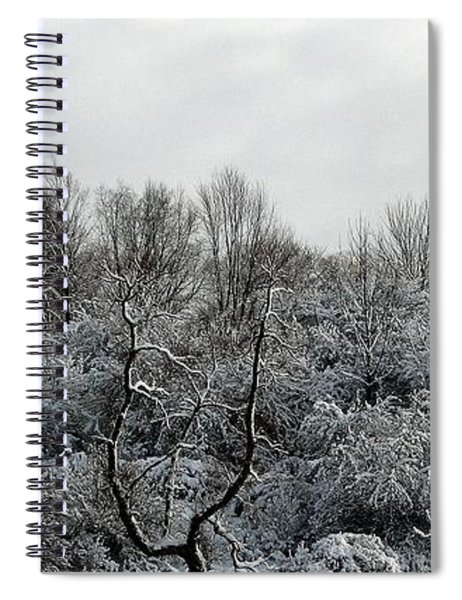 Snow Covered Trees Spiral Notebook by Rose Santuci-Sofranko