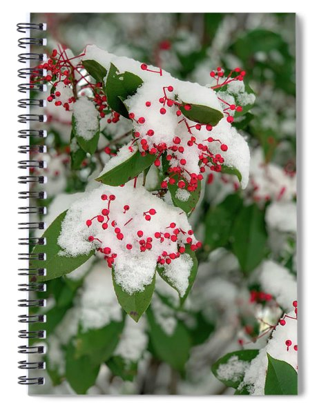 Snow Covered Winter Berries Spiral Notebook