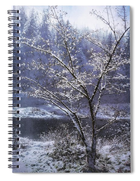 Snow Flowers Whimsy Spiral Notebook by Belinda Greb