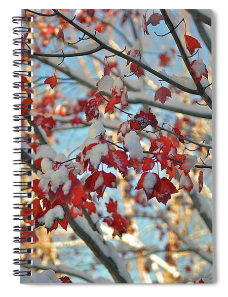 Snow On Maple Leaves Spiral Notebook
