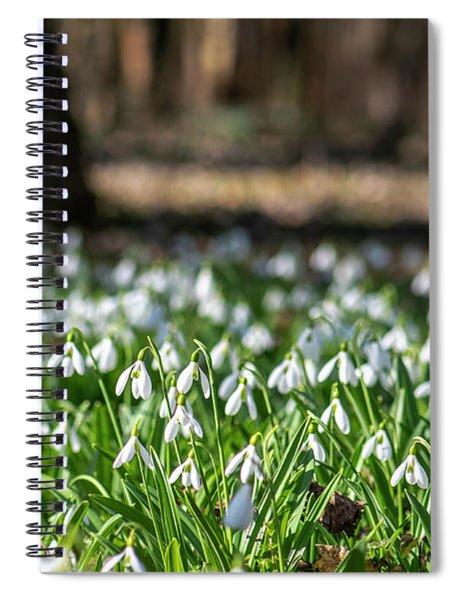 Snowdrops Field Spiral Notebook
